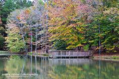 Multi-Flavored Autumn Reflection in Shelby County, Alabama