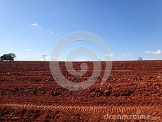 Photo about Soil preparation is one of the most important steps to having a successful cultivation. Image of composition, food, agriculture - 95215212