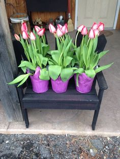 Tulips! Beautiful, Come pick up your Spring Flowers today at Rt. 522 Country Crafts