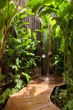 Someday I will have this in my outdoor space; a private place to shower in the sunshine!     Guas that benefit from both Wood and Water element is SE and E. Use big leafy plants to increase wealth. Planting bamboo with bring you stability and longevity for long term prosperity. Make sure the shower head or your source of water flows toward the home to bring wealth luck to you.