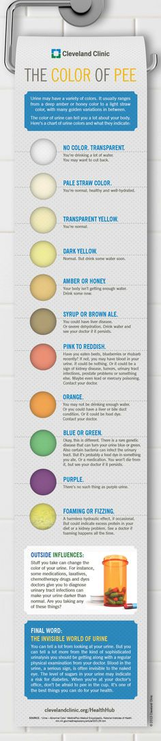 Natural Health - Watch your waste! The color of your urine says something about your health. Infographic from Cleveland Clinic HealthHub Health Facts, Health And Nutrition, Health And Wellness, Health Fitness, Health Chart, Health Exercise, Health Advice, Health Diet, Health Remedies
