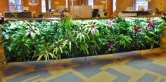 Living wall installation we made at CPG.   www.greenupgroup.com