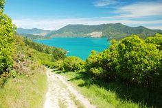 No Dia da Natureza, curta as trilhas ecológicas mais legais do mundo   Caia no Mundo