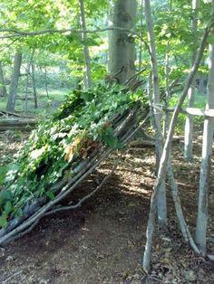 how to build an emergency shelter in a forest - Cómo construir un refugio de emergencia en el bosque