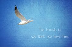 The trouble is, you think you have time.  Is there ever enough time?  ©dawnhoweth  www.picturethisbydawn.com