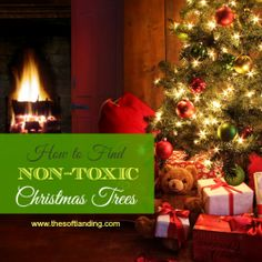 Until recently, artificial Christmas trees were cut from compressed polyvinyl chloride (PVC) sheets. Now there's a newer technology that allows manufacturers to createbranch tipsthatare made from injection-molded polyethylene (PE) plastic using copies of live tree needles. It creates a more realistic look and feel, while removing worries of toxic PVC, a win-win! As we talked …