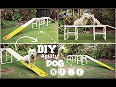 How To: DIY Agility Dog Walk | TheDogBlog - YouTube