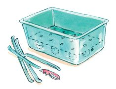 A simple plastic storage box can be a durable container for growing veggies and herbs. Illustration by Elayne Sears. From MOTHER EARTH NEWS magazine.