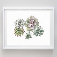 12 Succulents Watercolor Print Succulent Art by BeWildandFree