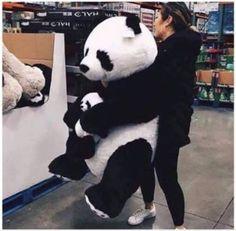 Desperately want it❤❤❤❤❤😍😍😍 Panda Day, Panda Love, Cute Panda, Panda Panda, Cute Love Pictures, Cute Animal Pictures, Big Teddy, Teddy Bear, Panda Kawaii