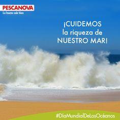 En el Día Mundial de los Océanos descubre los productos Pescanova procedentes de las mejores aguas o caladeros, ¡todo un mar de sabor!