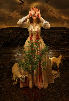 tom chambers. meant for love.