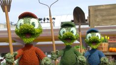Video Time Lapse: Huey, Dewey and Louie Debut at the Epcot International Flower & Garden Festival