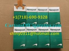 Duty Free Newport 10 Cartons of Cigarettes Outlet to USA,Newport Cigarettes,Free Carton Of Newports,Newports Wholesale,Newport Cigarettes Free Coupons Online, Free Coupons By Mail, Newport 100s, Cheap Cigarettes Online, Cigarette Coupons Free Printable, Newport Cigarettes, Staying Safe Online, Marlboro Cigarette, Security Solutions