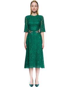 Dolce & Gabbana | Green Crystal-embellished Lace Dress | Lyst