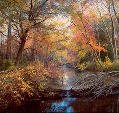 Autumns Afternoon by John Rivera / 500px (NJ)