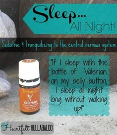 Sleep all night with Young Living's Valerian essential oil! Sedative and tranquilizing to the central nervous system. Essential Oils For Sleep, Yl Oils, Natural Essential Oils, Young Living Essential Oils, Essential Oil Blends, Doterra Oils, Valerian Essential Oil, Oils For Energy, Healing Oils