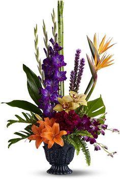 Paradise Blooms flower ...