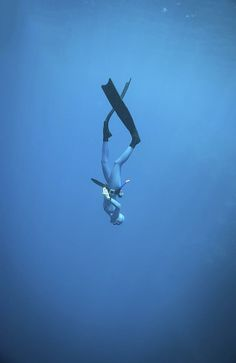 A woman freediving in the ocean. Great Blue Hole, Belize – From Parts Unknown Sea Fishing, Sport Fishing, Belize, Sea Angling, Great Blue Hole, Surf, Deep Blue Sea, Snorkelling, Koh Tao