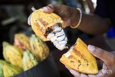 Es lohnt sich abseits der touristischen Pfade etwas auf Bali zu unternehmen.  Eir haben eine ausgiebige Radtour durch die Reisfelder gemacht, einen typischen lokalen Markt besucht und einen wunderbaren Kochkurs im grünen Landesinneren gemacht.  Wenn man nur in Strandnähe bleibt, ist es mittlerweile schon sehr touristisch geworden auf Bali.   #Bali #Kochkurs #Markt