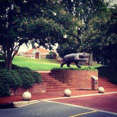 Davidson College in Davidson, NC