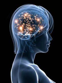 EXPANDIENDO LA CONCIENCIA.: El cerebro y la mente.