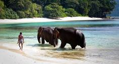 Image result for andaman islands