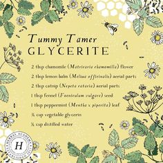 If you find yourself suffering from stomach cramps, gas, pain, bloating, and general unease this tummy-soothing glycerite can come to your assistance! Healing Herbs, Medicinal Plants, Natural Healing, Natural Health Remedies, Herbal Remedies, Herbal Medicine, Natural Medicine, Medicine Garden, Leiden