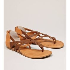 American Eagle Outfitters Bc Footwear Million Dollar Question Gladiator