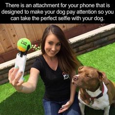 My dog would totally lunge at the ball LOL😂 Animals And Pets, Funny Animals, Cute Animals, Funny Cute, The Funny, Photo Humour, Dog Selfie, Lol, Wtf Fun Facts