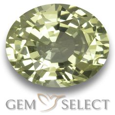 GemSelect features this natural untreated Chrysoberyl from Sri Lanka. This Green Chrysoberyl weighs 1.1ct and measures 6.7 x 5.4mm in size. More Oval Facet Chrysoberyl is available on gemselect.com #birthstones #healing #jewelrystone #loosegemstones #buygems #gemstonelover #naturalgemstone #coloredgemstones #gemstones #gem #gems #gemselect #sale #shopping #gemshopping #naturalchrysoberyl #chrysoberyl #greenchrysoberyl #ovalgem #ovalgems #greengem #green Green Gemstones, Loose Gemstones, Natural Gemstones, Buy Gems, Gem S, Gemstone Colors, Shades Of Green, Stone Jewelry, Sri Lanka