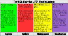 Examples of Hcg Menu plan. Clean eating. Made simple.  I Can't Wait!! http://dietsnomas.wordpress.com/