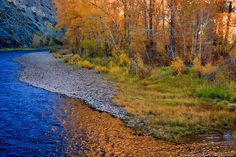 Fall Reflections in the Big Hole River, Montana