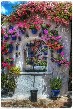 Thru this gorgeous courtyard window one can see another pretty window overlooking a Cordoba courtyard....