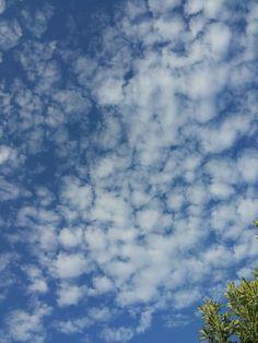 Céu azul..