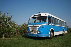 Bahnen und Busse - Omnibus H6B/L - Foto und Elektronische Postkarte