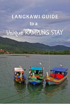 Looking for a unique Malaysian experience? A Langkawi Island Kampung Stay offers plenty! http://www.theislanddrum.com/langkawi-homestays-kampung-stays/