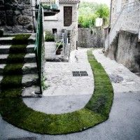 The Green Grass Carpet in French Village of Jaujac