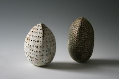 three sided highly textured seed pod by alan wallwork