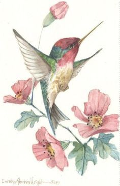Bird Life | Carolyn Shores Wright