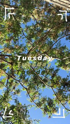 Tuesday mood Have you ever considered position to see in advance Mood Instagram, Creative Instagram Stories, Instagram And Snapchat, Instagram Story Ideas, Snapchat Stories, Insta Photo Ideas, Story Inspiration, Life Hacks, Photos