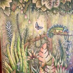 #art_e_colorir #adultcoloringbooks  #beautifulcoloring  #bayan_boyan  #boracolorirtop  #books_colors #coloringpencils  #coloring  #coloring_secrets  #coloringforgrownups  #creativelycoloring  #colorindolivrostop  #divadasartes  #coloringbook  #colortherapy  #fabercastell #tombowirojiten #kohinoorhardtmuth  #majesticcoloring  #prismacolor  #carandache  #carandachepencils  #carandachepablo  #magicjungle #johannabasford