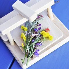 Wooden plant press. Lots of fun activities and projects to go with this. $26.95. Not for children under 3.