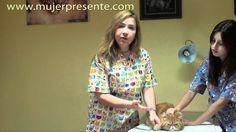 Gatos con la Dra. Lina Sanz, Cómo cortar las uñas de tu gato