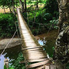 Puente en Sabanilla #excursion #nature