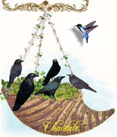 Animated GIF Glitter Graphics Birds | Glitter Text » First Names » Shell and Birds