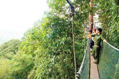 Aussichtspunkt Kinabalu Nationalpark