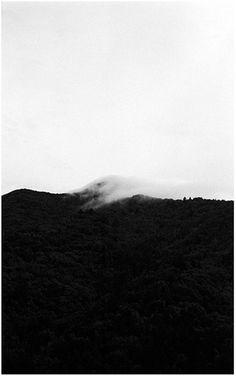 Andrew Laumann – smokebath.com