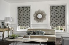 Courtains? or... Shades and Blinds? What should I do?
