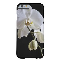 White Orchid on Black iPhone 6
